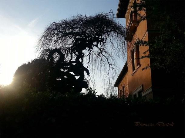 Gita a Reggio