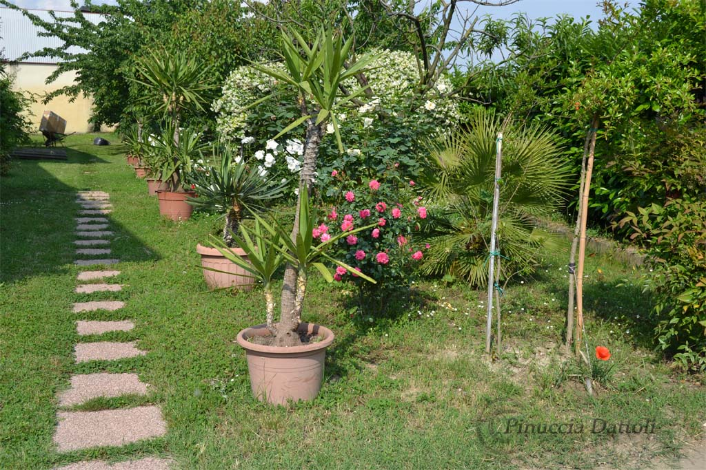 Il mio giardino pinuccia
