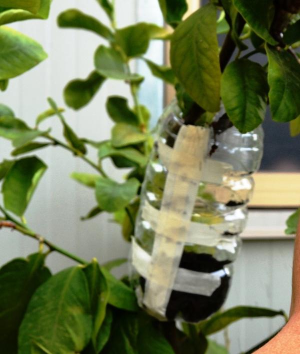 manicotto-con-adesivo