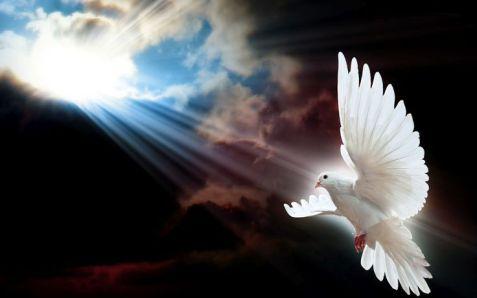 bddcf709c4287b7763f47635b3b4d381--sun-rays-spiritual-thoughts